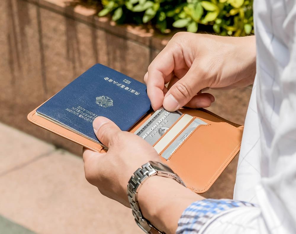 Voyager Passport Wallet